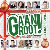 Kersfees Gaan Groot de Various Artists