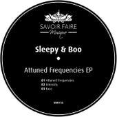 Attuned Frequencies EP von Sleepy