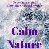 Calm Nature - Diepe Ontspanning Vibrerende Helende Muziek met Natuurlijke New Age Instrumetale Geluiden by Various Artists