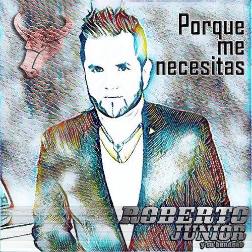 Porque Me Necesitas by Roberto Junior