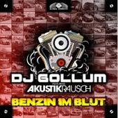 Benzin im Blut de DJ Gollum