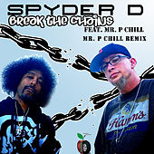 Break the Chains (Mr. P Chill Remix) by Spyder-D