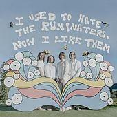 I Used to Hate the Ruminaters, Now I Like Them by The Ruminaters