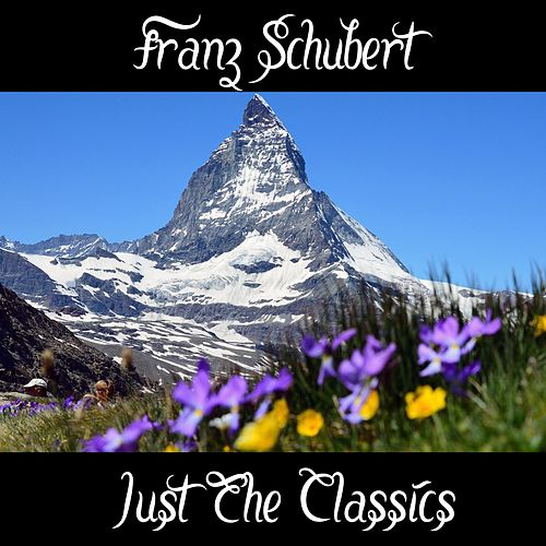 Franz Schubert: Just The Classics by Richard Tauber