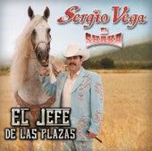 El Jefe De Las Plazas de Sergio Vega Y Sus Shakas Del Norte