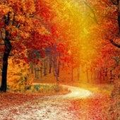 Leaves Fall by Stephanie Sante