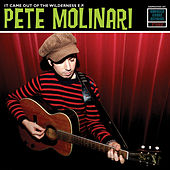 It Came Out Of The Wilderness EP by Pete Molinari