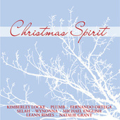 Christmas Spirit von Various Artists