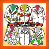 Live at Terminal West by American Aquarium