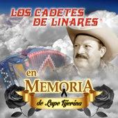 En Memoria De Lupe Tijerina by Los Cadetes De Linares