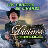 Corridos Divinos by Los Cadetes De Linares