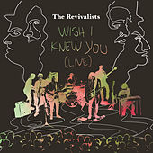 Wish I Knew You by The Revivalists