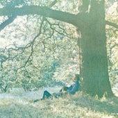Plastic Ono Band de Yoko Ono