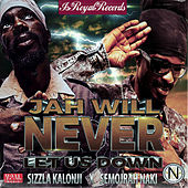 Jah Will Never Let Us Down by Sizzla