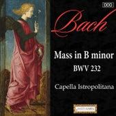 Bach: Mass in B Minor, BWV 232 von Hartmut Elbert
