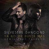 Ya No Me Duele Más (Remix) de Silvestre Dangond