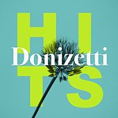 Donizetti Hits by Various Artists