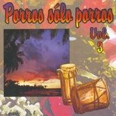 Porros Sólo Porros, Vol. 3 by Various Artists