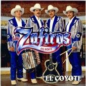 El Coyote by Los Zafiros del Norte