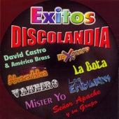 Éxitos Discolandia by Various Artists