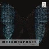 Metamorfoses by Gregório Calleres