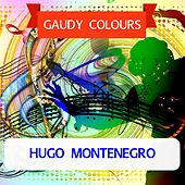 Gaudy Colours by Hugo Montenegro