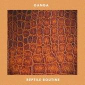 Reptile Routine de Ganga (Hindi)
