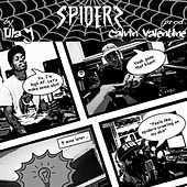 Spiders by Illa J