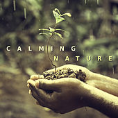 Calming Nature – Best Relaxing Music, Full of Nature Sounds, Water Sounds for Meditation, Yoga de Sounds Of Nature