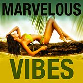 Marvelous Vibes (House Selection) by Various Artists