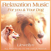 Relaxation Music for You and Your Dog by Llewellyn