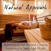 Natural Approach - Problemlösning Öka Hjärnkapacitet Mental Övning Instrumental New Age Musik för Djup Meditation och Relax Spa by Spa Music Collection