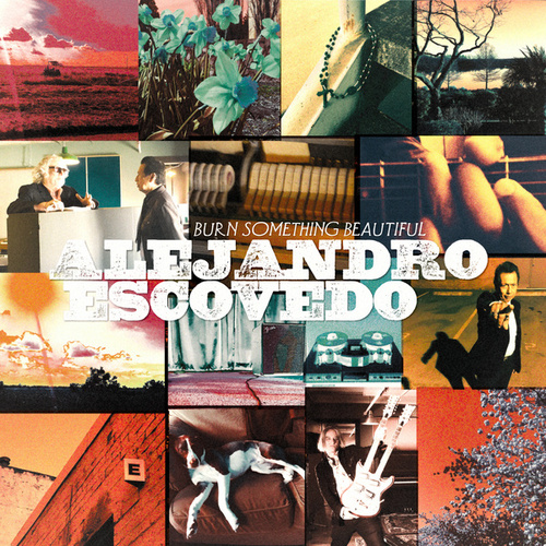 Burn Something Beautiful by Alejandro Escovedo
