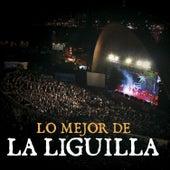 Lo Mejor de la Liguilla - En Vivo de Various Artists