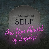 Are You Afraid of Dying? by The Good Life