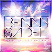Homenaje a Benny Sadel de Various Artists