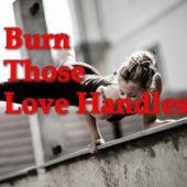 Burn Those Love Handles by Various Artists