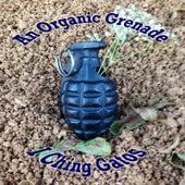 An Organic Grenade by I Ching Gatos