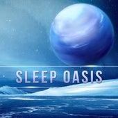 Sleep Oasis – Calming Sounds for Sleep, Relaxation Music for Easy Sleep, Fall Asleep Easily, Peaceful New Age Sounds for Sleep by Sleep Sound Library