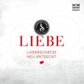 Liebe - Das Liederschatz-Projekt von Various Artists