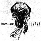Humana by Scum