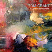 Light Inside My Dream, The by Tom Grant