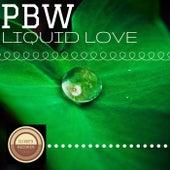Liquid Love de Pbw
