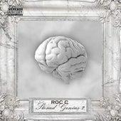 Stoned Genius 2 de Roc 'C'