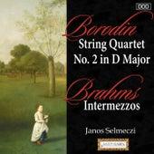 Borodin: String Quartet No. 2 in D Major - Brahms: Intermezzos by Various Artists