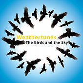 The Birds And The Sky by Weathertunes