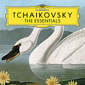 Tchaikovsky: The Essentials de Various Artists