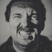 Joy by Brandt Brauer Frick