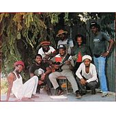 Rum Tree by Roots Radics