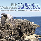 It's Raining, But Not Now by Erik Weissglas